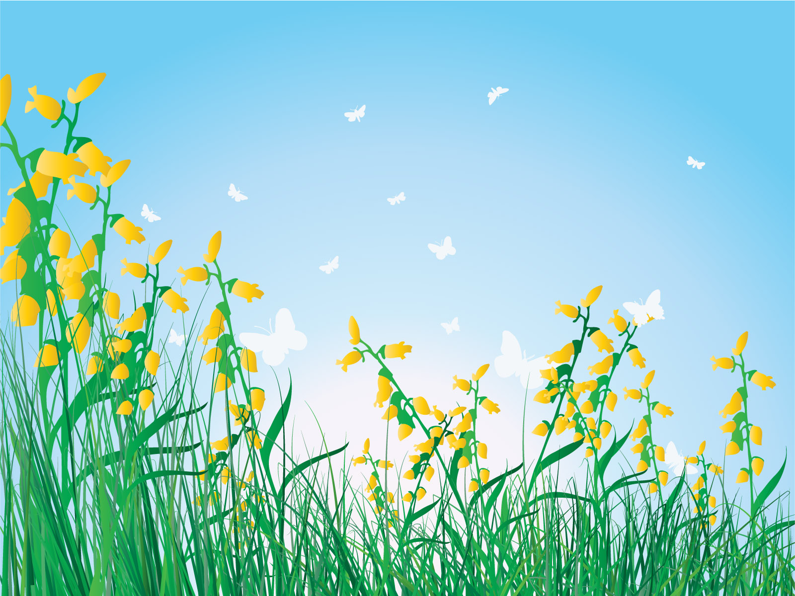 Grass flowers isolated sky PPT Backgrounds
