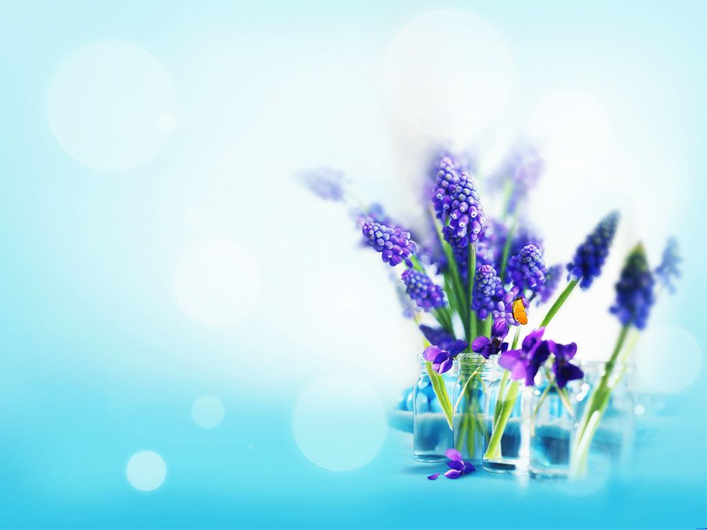 Elegant lavender PPT Backgrounds