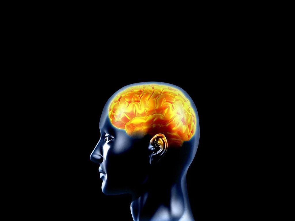 Epilepsy Brain PPT Backgrounds