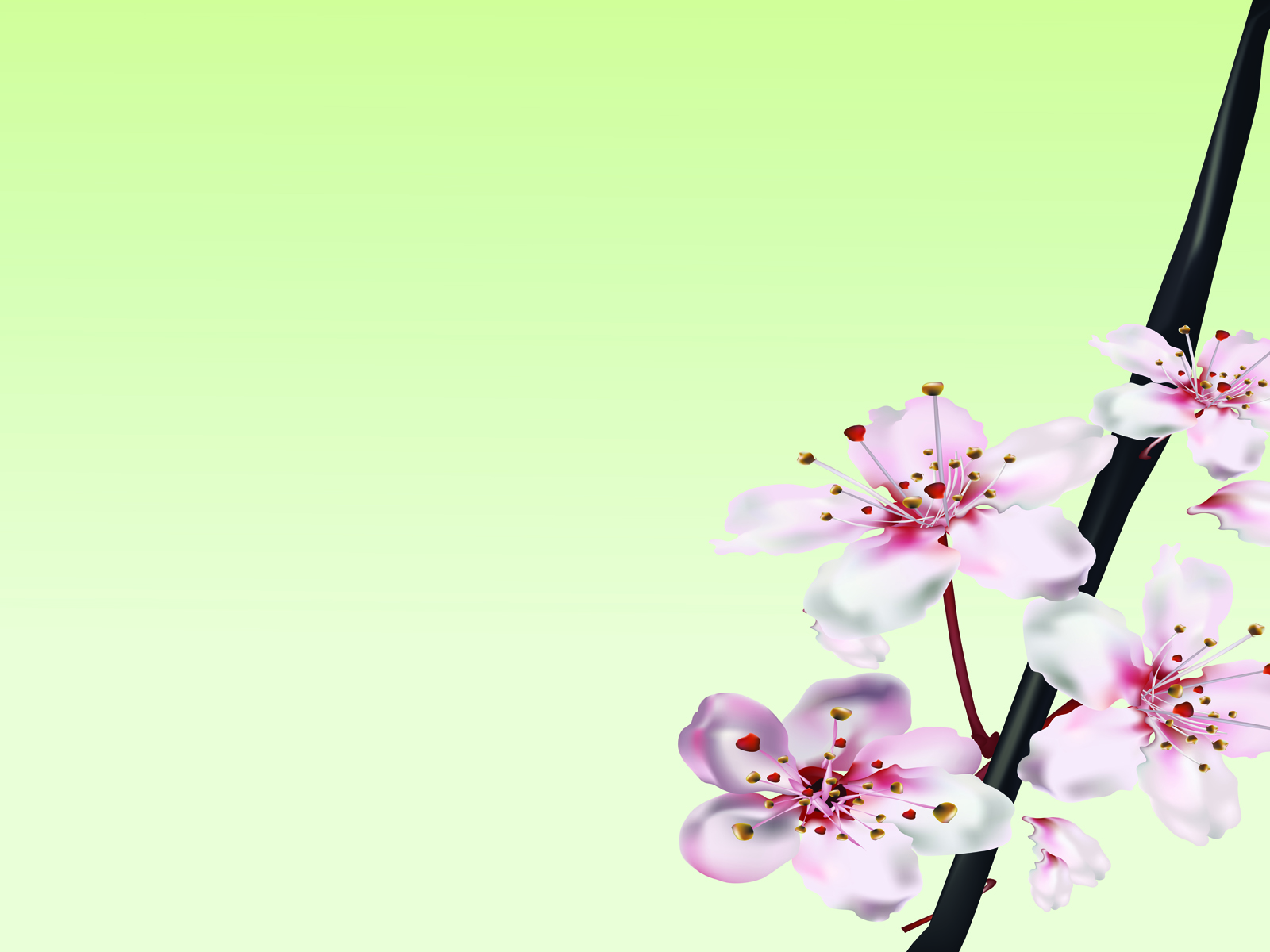 Nature pink ppt design PPT Backgrounds