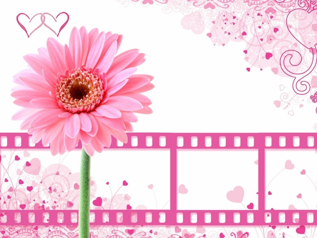 Pink Film PPT Background Background for Powerpoint Program