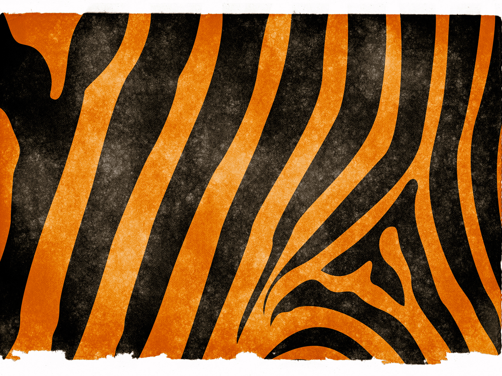 Tiger stripes grunge paper PPT Backgrounds