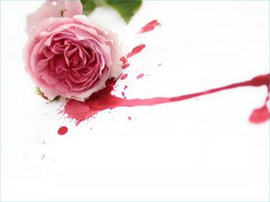 A Rose Flower in Blood PPT templates