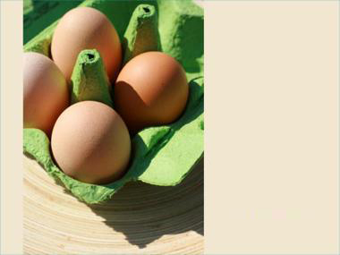 Eggs Pack PPT templates