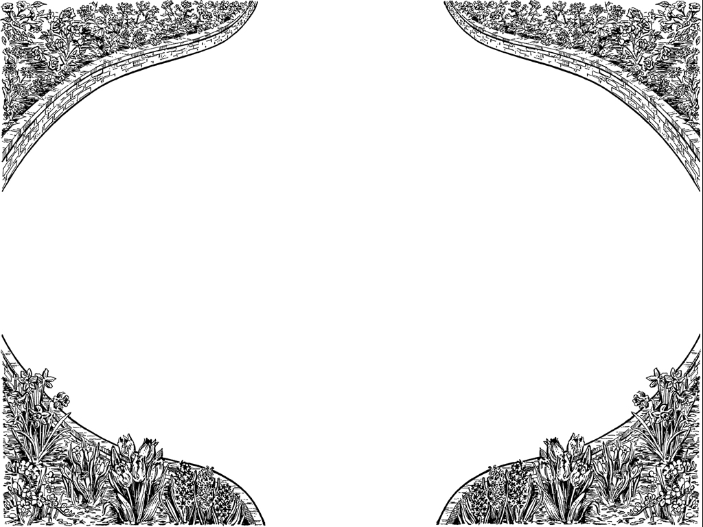 White border pattern PPT templates