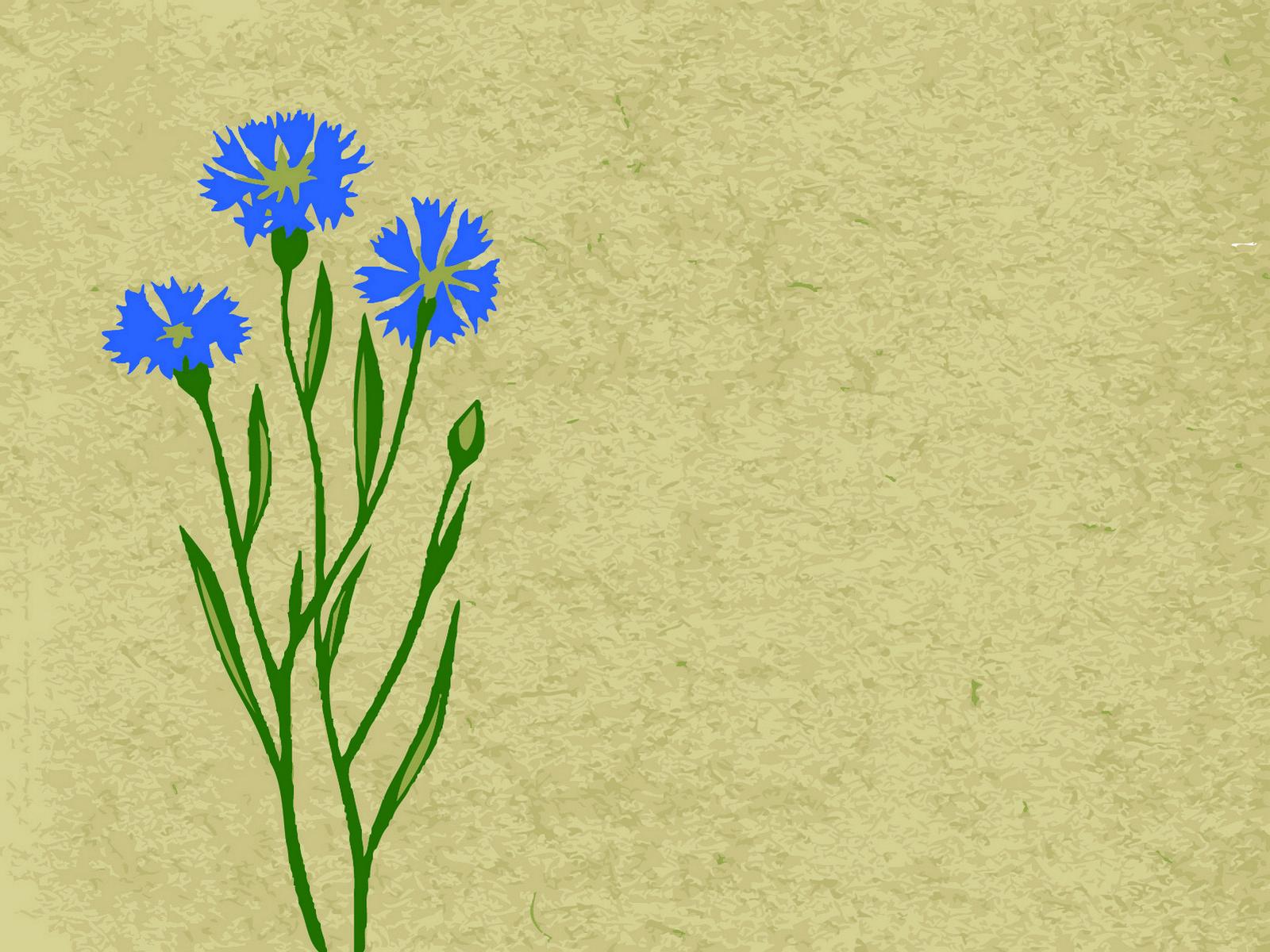 Blue Cloves PPT Backgrounds